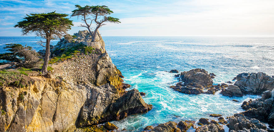 "=""A stunning view of the Lone Cypress on the 17 mile drive in Pebble Beach, California"
