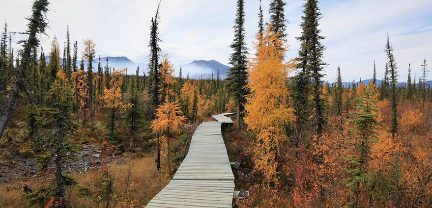 Nahanni National Park Reserve in the northwest Territories of Canada