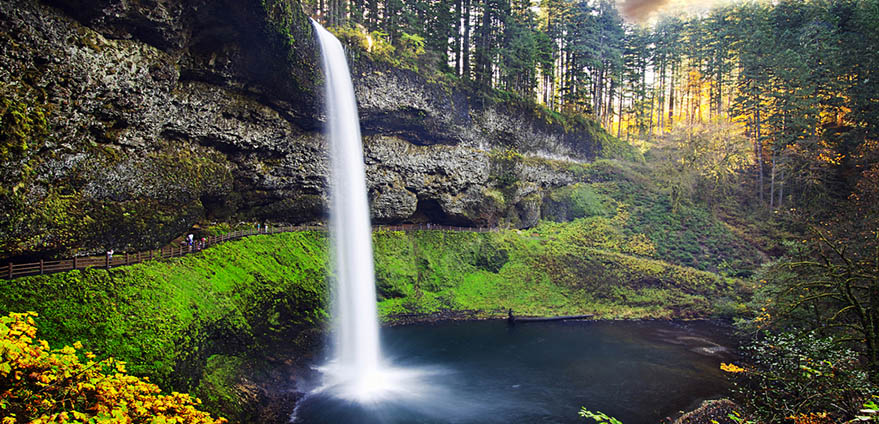 View of the South Falls surrounded by lush green plants and moss along the Trail of Ten Falls at Silver Falls State Park  in Oregon in early morning on a clear day