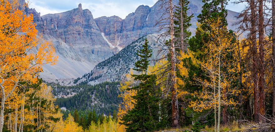 Wheeler Peak: over 13,000 feet in elevation. Highly scenic Great Basin National Park in Nevada