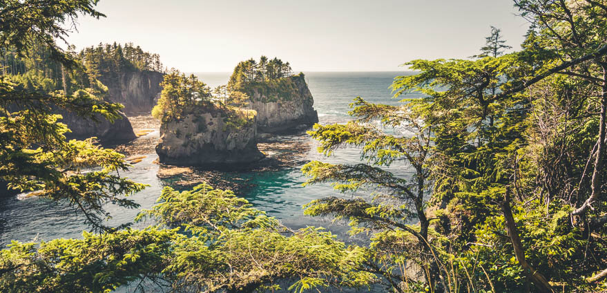 Landscape of Cape Flattery, Washington State on a clear day