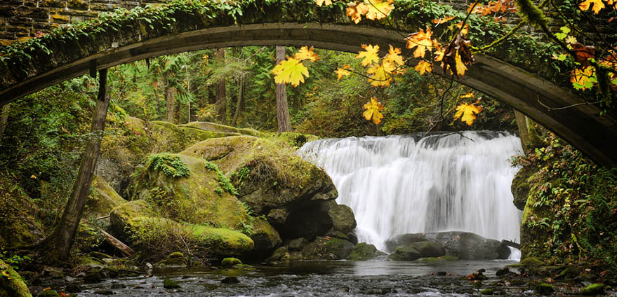 Whatcom Falls is a beautiful background to a mossy stone bridge in Bellingham, Washington