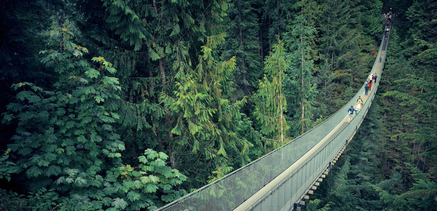 Visitors walk the jaw dropping Capilano Suspension Bridge amid lush forest in Vancouver, Canada