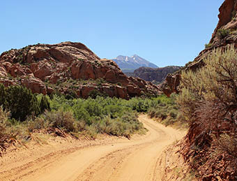 A rustic dirt road in Moab, Utah on a pristine sunny day