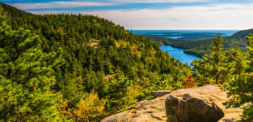 Beautiful view from North Bubble in Acadia National Park, Maine, under a summer blue sky shows pine trees covering the landscape and the Atlantic ocean in the distance.