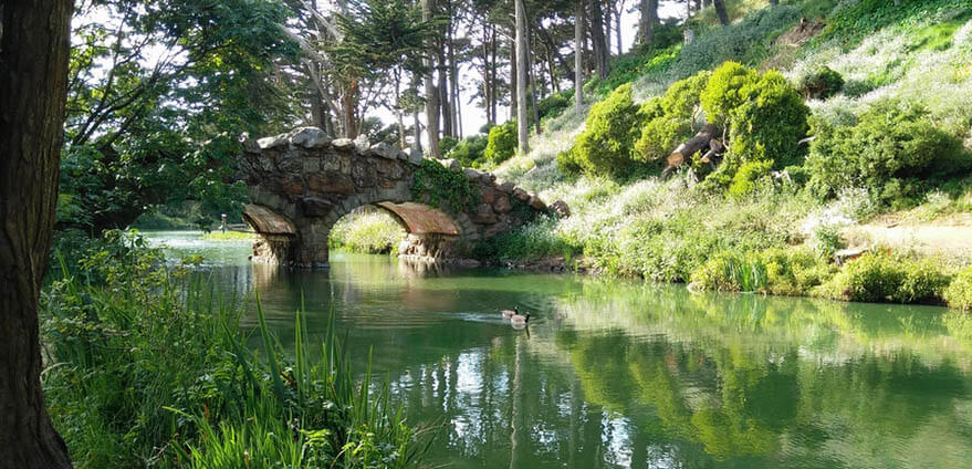 A lake and bridge await to be explored on a bright morning in Golden Gate Park, San Francisco.