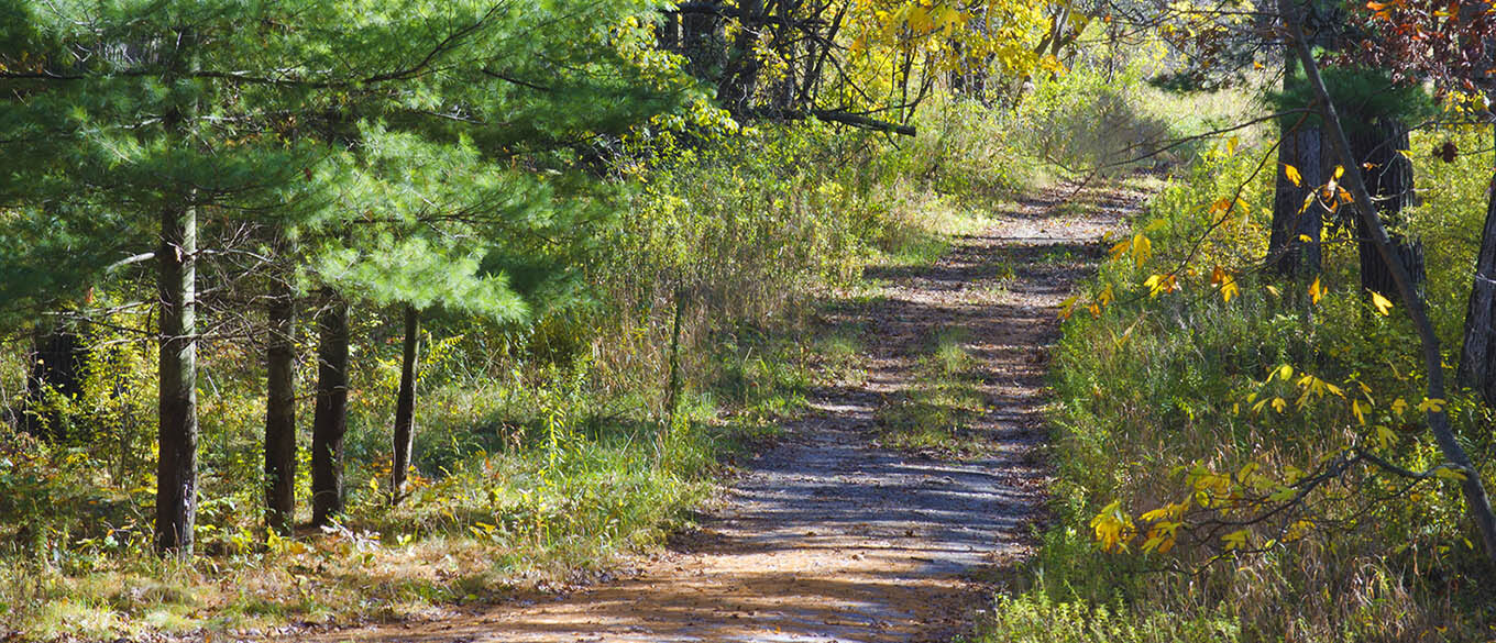 A path along Indiana Dunes National Lakeshore awaits to be explored on a bright afternoon