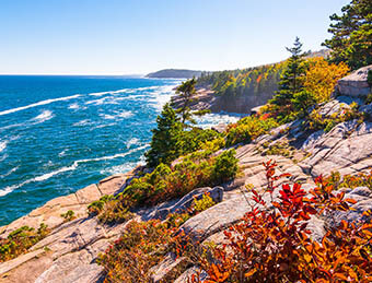 View of the Maine coastline along the Atlantic Ocean at Acadia National park on a clear day in autumn as the colorful foliage grows through the rocks.
