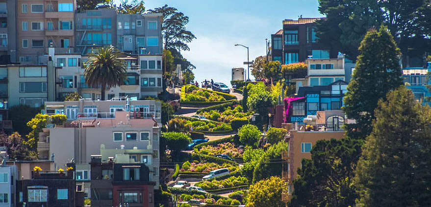 Rows of white houses and condos line either side of a curved pathway with bright green grass on either side of it, on Lombard Street in San Francisco, California